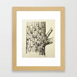 Tree bark Framed Art Print