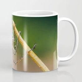 Dragonfly Macro Portrait In Nature, Nature Wall Art Print, Insect Close-Up Photography, Large Print Coffee Mug