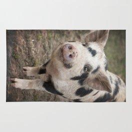 Kune Kune Piggy Rug