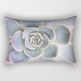 Nature Photography | Cactus Art | Pink and Blue Succulent | Plant | Botanical Rectangular Pillow