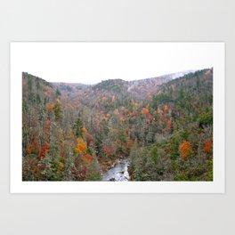 Fall Forest, Horizontal Art Print
