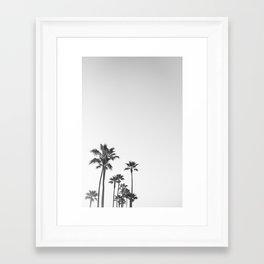 Black and White California Palms Framed Art Print