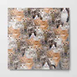 cats pattern lot of funny animals cheesy crazy Metal Print