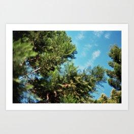 Three tree Art Print