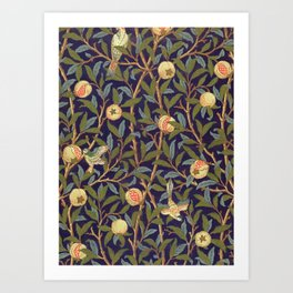 William Morris Bird And Pomegranate Art Print