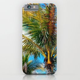 Palms at Midmorning iPhone Case
