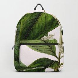 T U L I S S A . Backpack