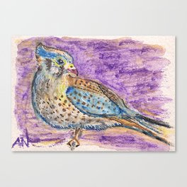 Bird in Watercolor Pencil Canvas Print