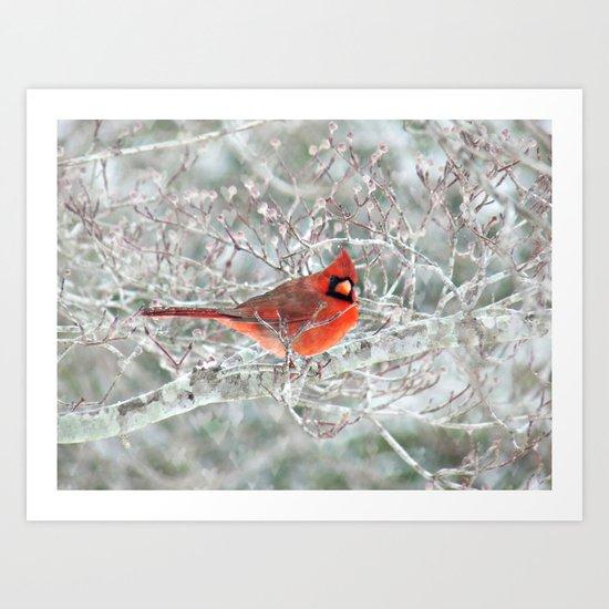 Winter Charmer Art Print