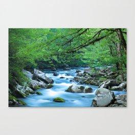 Mountain Stream 1 Canvas Print