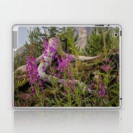 Fireweed on the Mountain Laptop & iPad Skin