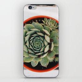 peace iPhone Skin