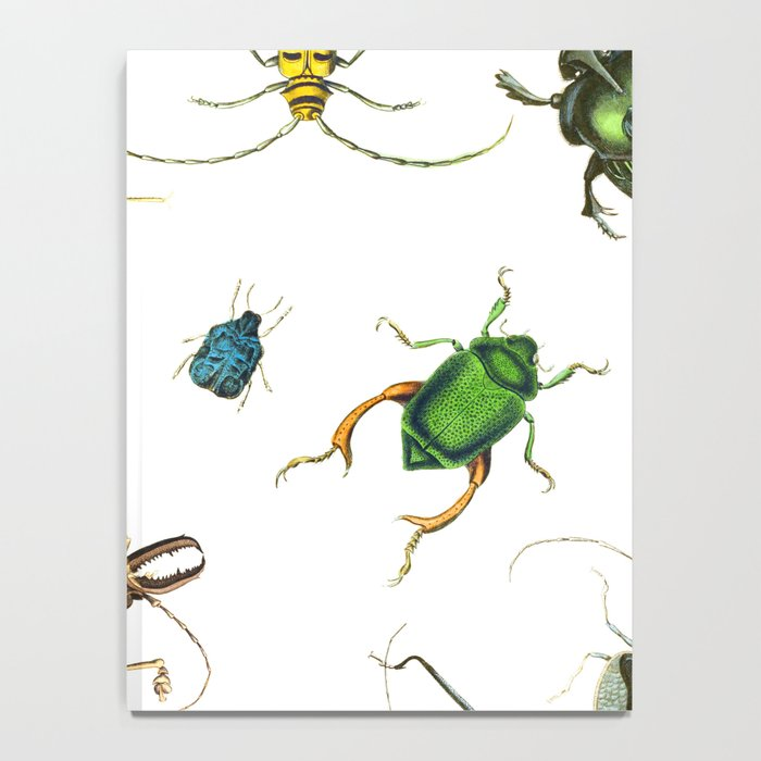 Bug Life - Beetles - Bugs - Insects - Colorful - Insect Pattern Notebook