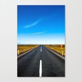 100825.002 Canvas Print