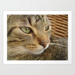 gribouille Art Print