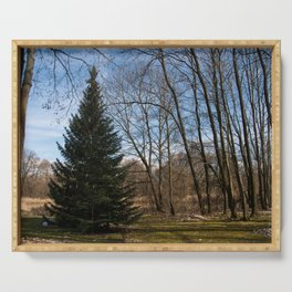 Beautiful Conifer Tree Forest Landscape Serving Tray