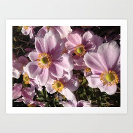 Pink flower party Art Print