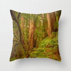 Redwoods Regional II Throw Pillow