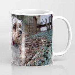 Morkie Walk Coffee Mug