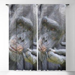 Chimp 519-2 Blackout Curtain