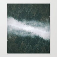 Forest Reflections IV Canvas Print