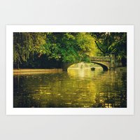 rowing Art Prints featuring Rowing by nature by Eduard Leasa Photography