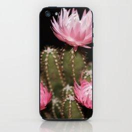 Pink Cactus iPhone Skin