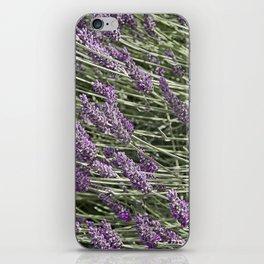 "LAVANDULA ""FRED BOUTIN"" iPhone Skin"