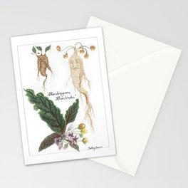 Mandrake Botanical Art Stationery Cards