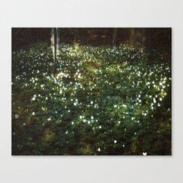 Where Love Grows Canvas Print