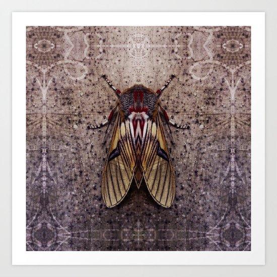 Moth II Art Print