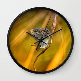 Common blue Wall Clock
