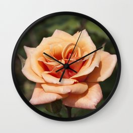 Beautiful Apricot Rose Wall Clock
