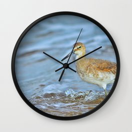 Wading Willet Wall Clock