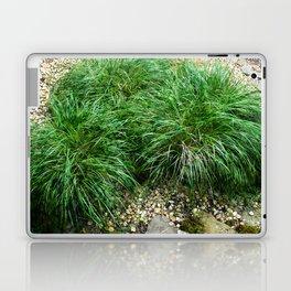 Decorative Grass Laptop & iPad Skin