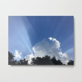 Cold Morning Light Metal Print