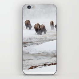 Yellowstone National Park - Bison Herd iPhone Skin