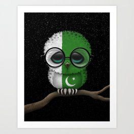Baby Owl with Glasses and Pakistani Flag Art Print