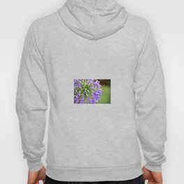 Agapanthus (African Lily) Hoody