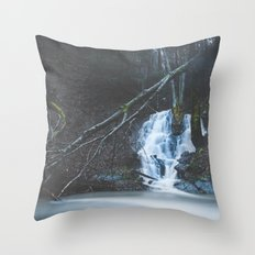 Emerging waterfall after the flood Throw Pillow