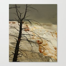 The Beauty Of A Travertine Terrace Canvas Print
