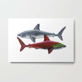Salmon Sharks Metal Print