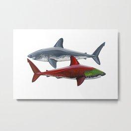 Salmon Sharks Metal Print