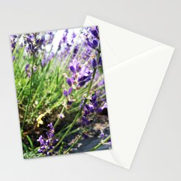 Lavender Bumble Bee Stationery Cards