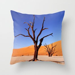 Dead Vlei Namibia III Throw Pillow