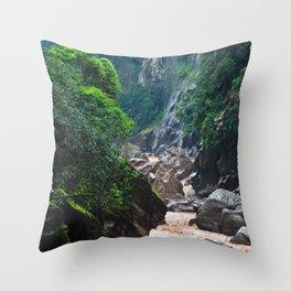 Peruvian Amazon II Throw Pillow