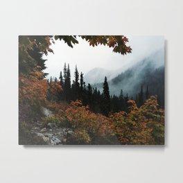 Fall Framed Trail Metal Print