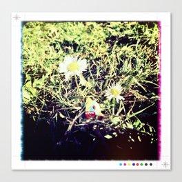Domos Enjoying Nature Canvas Print