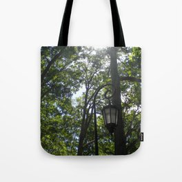 Lamppost, Wellesley College Tote Bag