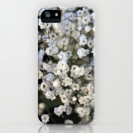 Valentine's Day Roses 19 iPhone Case